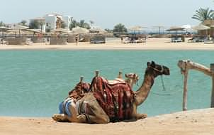 Holidays to El Gouna on the Red Sea