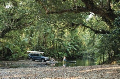 Holidays to Australia with Escape Worldwide - Daintree Rainforest (copyright Tourism Port Douglas and Daintree)