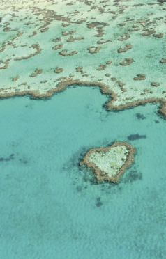 Holidays to Australia with Escape Worldwide - Great Barrier Reef (copyright Tourism Whitsundays)