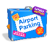 Car Parking at the Airport