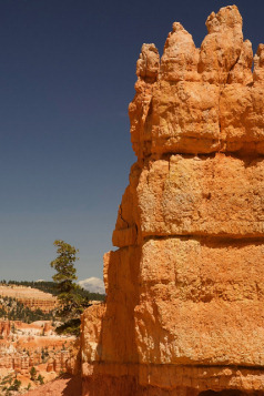 Holidays to Monument Valley, the Grand Canyon and Bryce Canyon with Escape Worldwide
