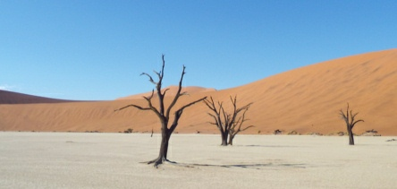 Holiday to Sossusvlei and the Namib-Nakluft National Park, Namibia